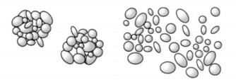 Beispiel: Agglomerate einer Suspension im Ruhezustand (links) und unter Scherung (rechts)